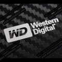 Western Digital Metal Logo Sticker